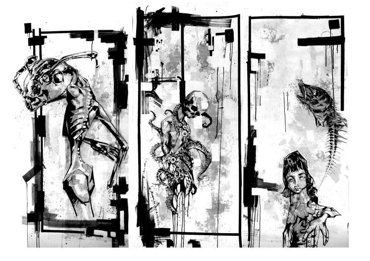 The Nova Triptych